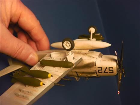 Skyraider 43.JPG by neil5208