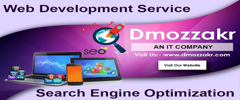 WebSite Design and SEO Company in Chandigarh (2).png by Dmozzakr