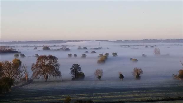 Mist.jpg -