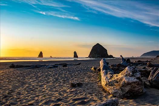 Driftwood on Cannon Beach Oregon.jpg by travelphotographer65