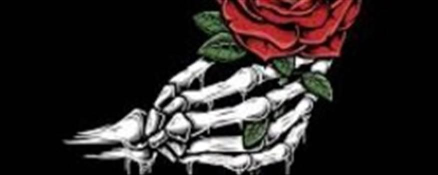 skull-hand-holding-a-rose-348805698.jpg by ProkChamp06
