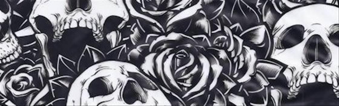 Roses-and-Skulls.jpg by ProkChamp06