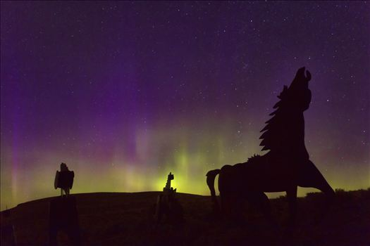 Horseplay in the Northern Lights by Bear Conceptions Photography