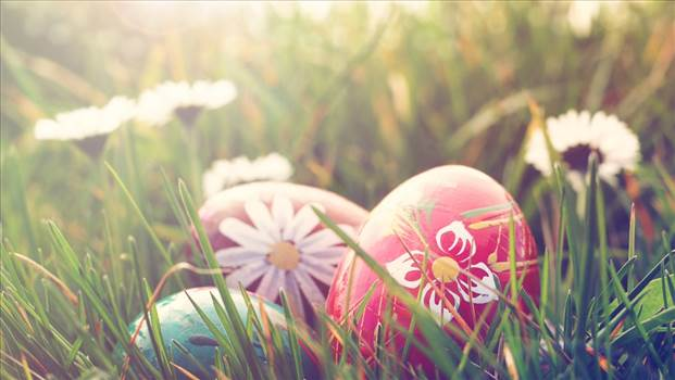 Exciting Easter Events To Hop Over To This Weekend.jpg by SunAmerican