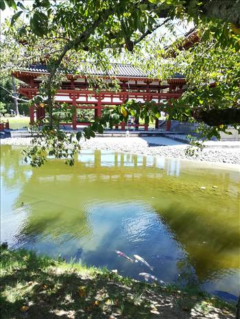 10yen_pond.jpg by Cantaloupe1