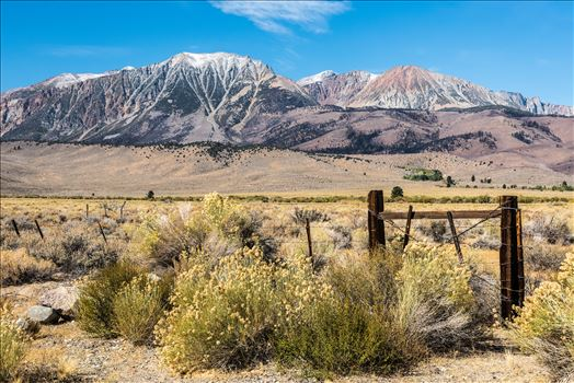 Eastern Sierra Scene by Dawn Jefferson