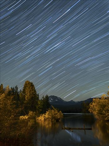 Star Trails in the Summer Sky by Dawn Jefferson
