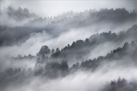 Misty Mountains by Dawn Jefferson