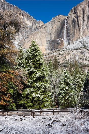 Yosemite Falls in Winter by Dawn Jefferson