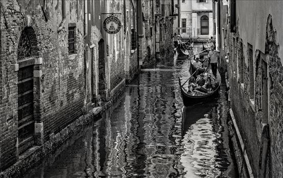 Venice by Dawn Jefferson