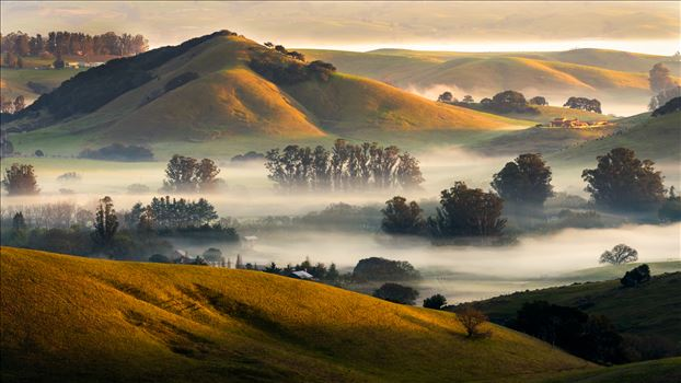 Valley Fog by Dawn Jefferson