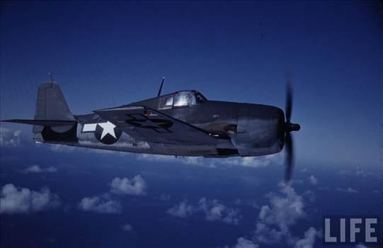 Grumman-F6F-3-Hellcat-USA-colored-photo-by-Time-Life-03.jpg by jamieduff1981
