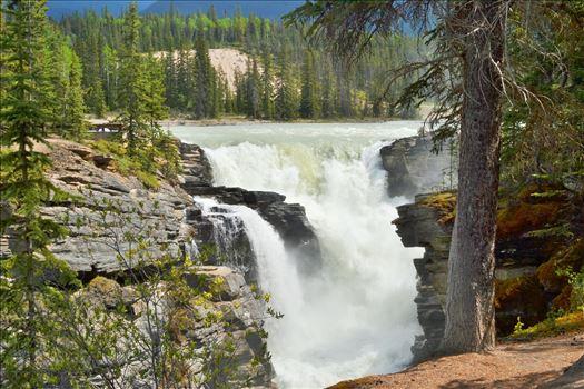 Athabaskan falls by Alana
