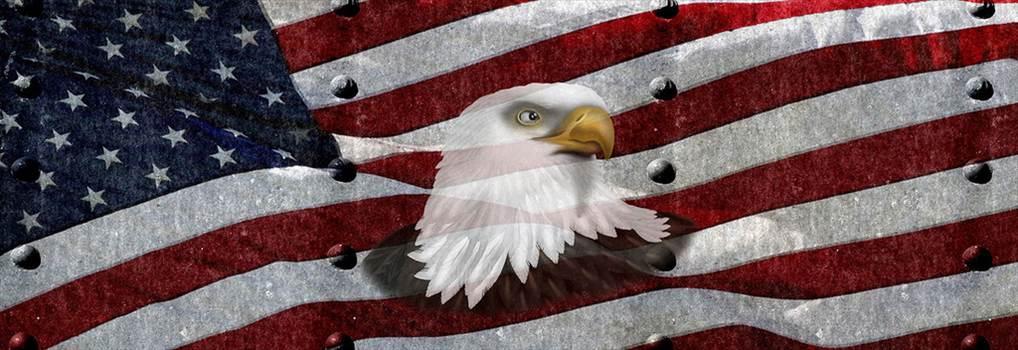 AmericanFlagTXrivets_Eagle_Head_ebay.jpg by Michael