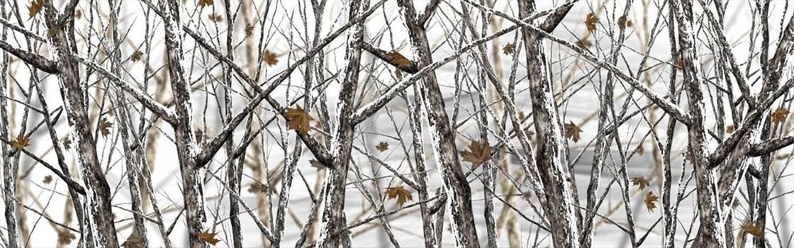 Snowstorm(1).jpg by Michael