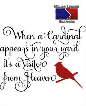 cardinal_2.jpg -