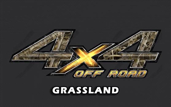 grassland.jpg -