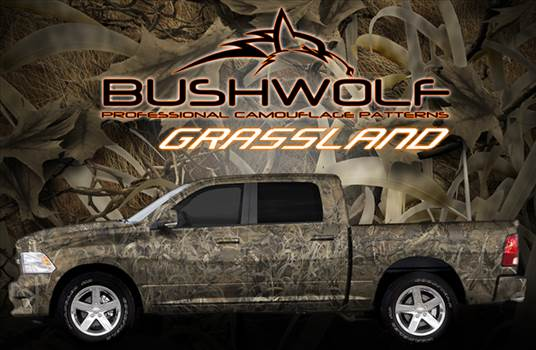 bushwolf_grasslands_poster.jpg by Michael
