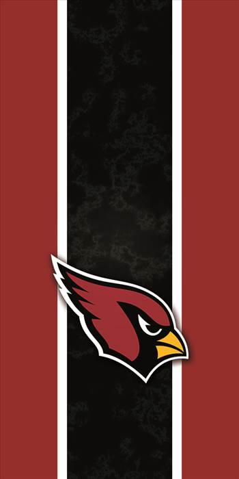 az_cardinals_ebay.jpg -
