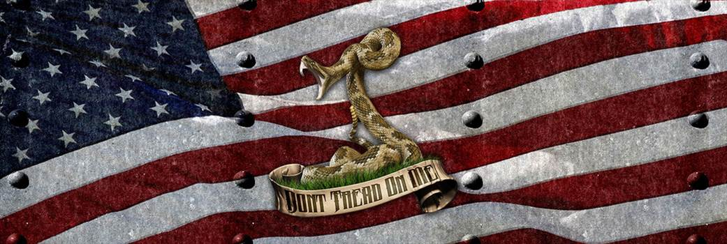 riveted_american_hd_snake_ebay.jpg by Michael