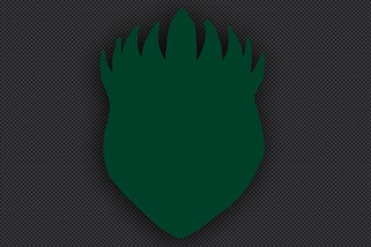 12th_Division_Insignia_Green.jpg -