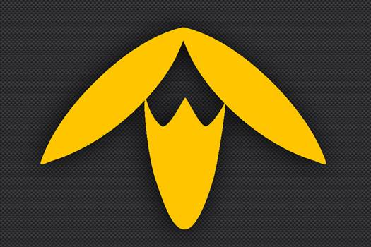 13th_Division_Insignia_Yellow.jpg -