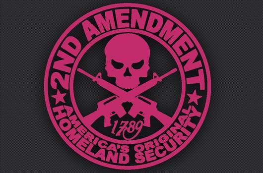 2nd_pink.jpg -