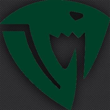 fairy_tail_sabertooth_guild_logo_green.jpg -