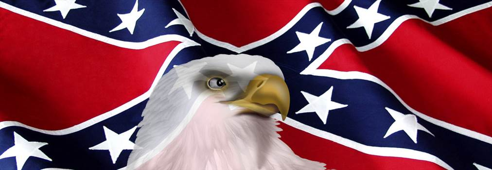 RebelFlag2_eagle_window.jpg -