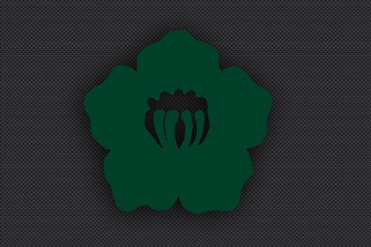 6th_Division_Insignia_Green.jpg -