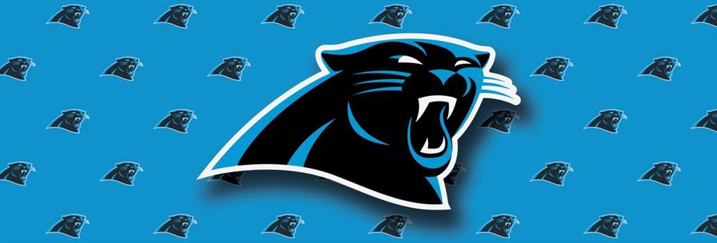 carolina_panthers_window.jpg -