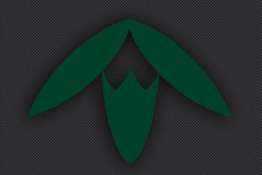 13th_Division_Insignia_Green.jpg -