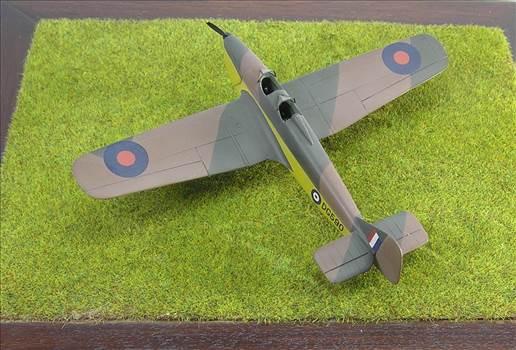 Hawk Major 24.JPG by warby22