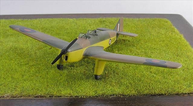Hawk Major 18.JPG by warby22