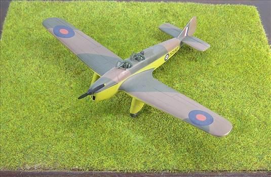 Hawk Major 17.JPG by warby22