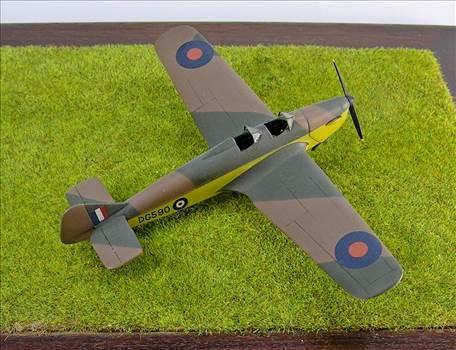 Hawk Major 21.JPG by warby22