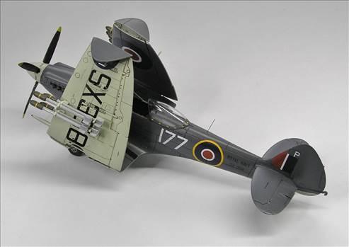 Seafire XVII  06.JPG by warby22
