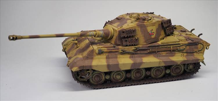 King Tiger 07.JPG by warby22