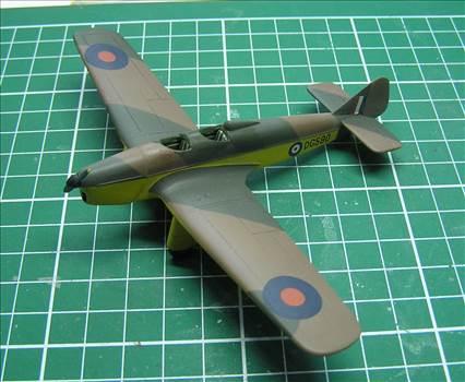 Hawk Major 14.JPG by warby22