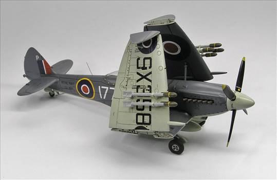Seafire XVII  10.JPG by warby22