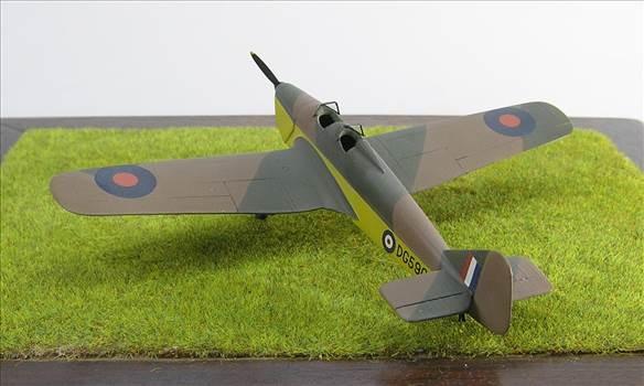 Hawk Major 23.JPG by warby22
