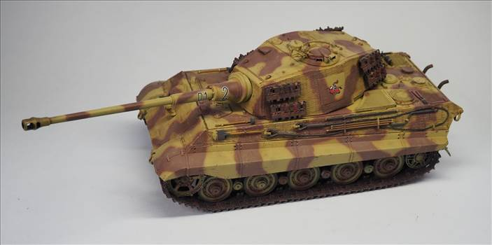 King Tiger 08.JPG by warby22