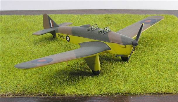 Hawk Major 19.JPG by warby22