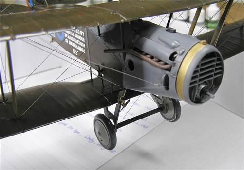 Bristol Fighter 40.JPG by warby22