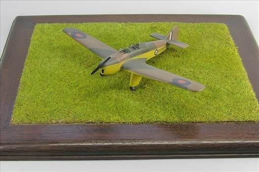 Hawk Major 16.JPG by warby22