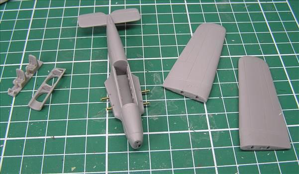 Hawk Major 02.JPG by warby22