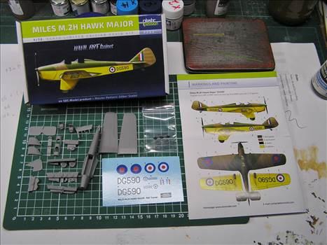 Hawk Major 01.JPG by warby22