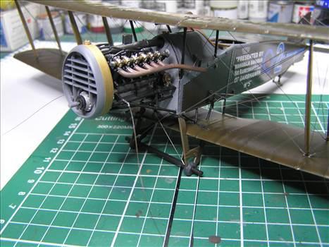 Bristol Fighter 36.JPG by warby22