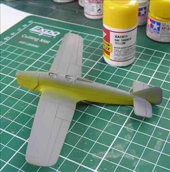 Hawk Major 10.JPG by warby22