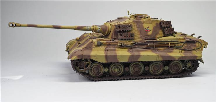 King Tiger 06.JPG by warby22